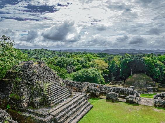 Galería Birds and WL Belize and Tikal 565x424